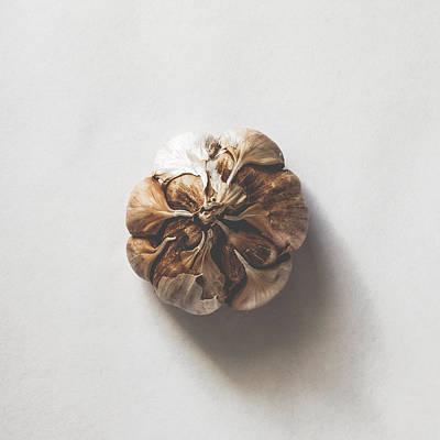 Kitchen Decor - Garlic Art Print