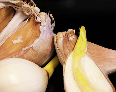 Photograph - Garlic by Nick Mares