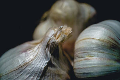 Photograph - Garlic by Nisah Cheatham