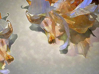 Digital Art - Garlic Skin Gossamer by Lynda Lehmann