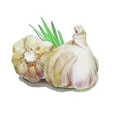Painting - Garlic Watercolor Illustration  by Irina Sztukowski