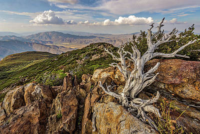 Photograph - Garnet Peak by Peter Tellone