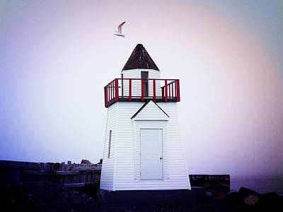 Photograph - Garnish Lighthouse by Zinvolle Art