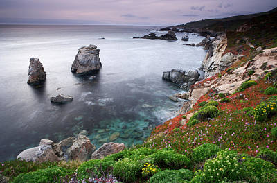 Garrapata Shore Art Print by Eric Foltz