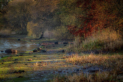 Photograph - Gartmorn Dam Country Park In Clackmannanshire by Jeremy Lavender Photography