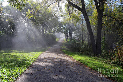 Photograph - Garvin Heights Path With Sunbeams Winona Mn by Kari Yearous