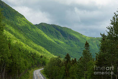 Photograph - Gaspe Mountains by Les Palenik