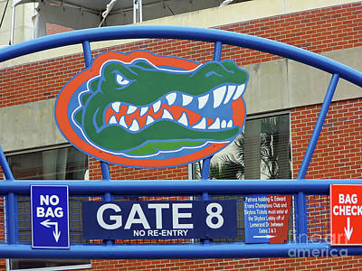 Photograph - Gate 8 At The Swamp by D Hackett