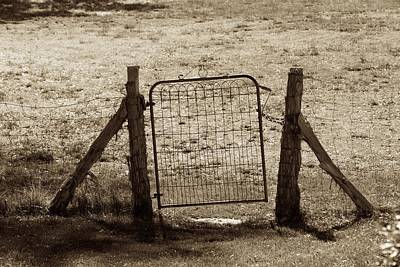 Photograph - Gate Enough by Eric Tressler