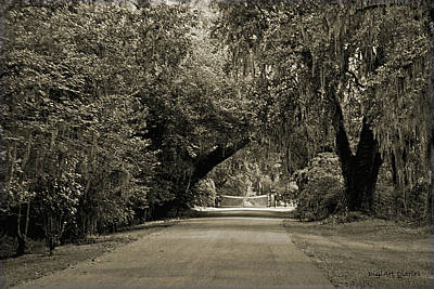 Pathway Digital Art - Gate To Magnolia Plantation by DigiArt Diaries by Vicky B Fuller