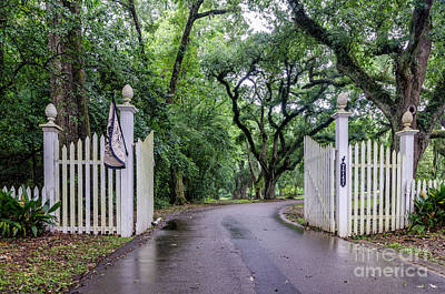 Photograph - Gates To Myrtle's Plantation In La by Kathleen K Parker