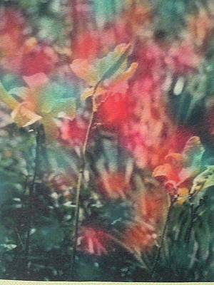 Urban Nature Study Digital Art - Gateway Garden Summer- 94 by Xusca Sole