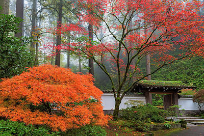 North America Photograph - Gateway To Portland Japanese Garden by David Gn
