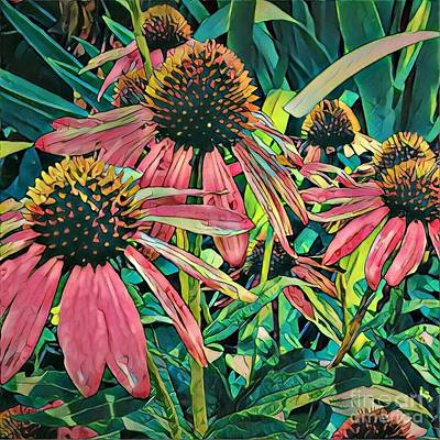Photograph - Gathering Of Coneflowers by Diane Miller
