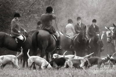 Photograph - Gathering Of The Hunt 2 In Black And White by Angela Rath