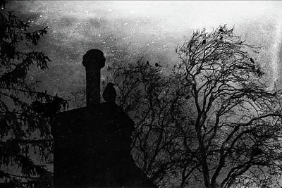 Photograph - Gathering by Siegfried Ferlin
