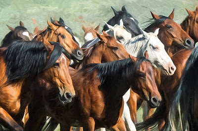 Photograph - Gathering The Herd by Judy Neill