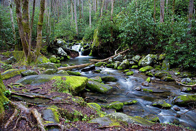 Photograph - Gatlinburg Water by Lindsey Weimer