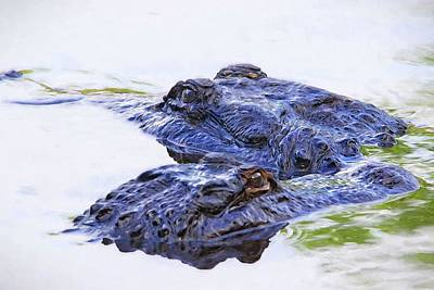 Photograph - Gator Buddies by Alice Gipson