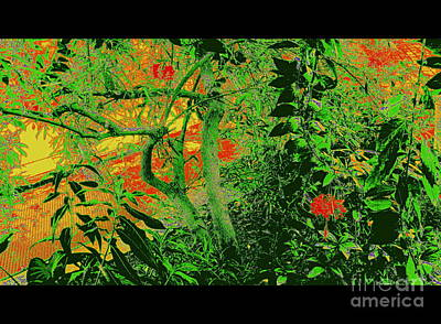 Photograph - Gauguin Garden by Nancy Kane Chapman