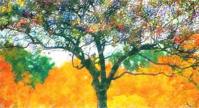Photograph - Gauzy Fall Tree by Ellen Barron O'Reilly