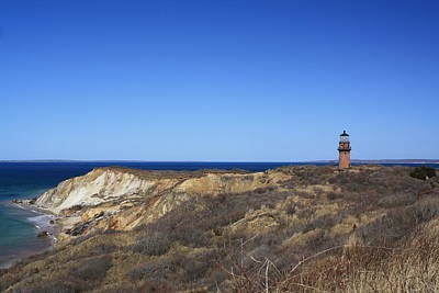 Art Print featuring the photograph Gay Head Lighthouse And Cliffs by Greg DeBeck