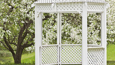 Photograph - Gazebo And Spring Blossoms by Alan L Graham