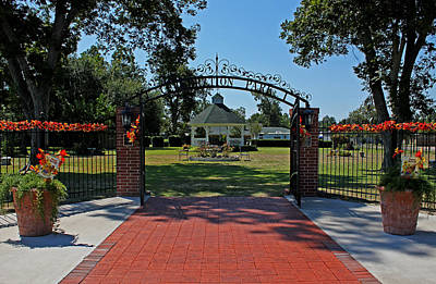 Art Print featuring the photograph Gazebo At Celebration Park by Judy Vincent