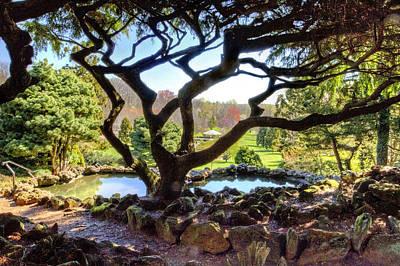 gazebo through the trees at Deep Cut Gardens Art Print