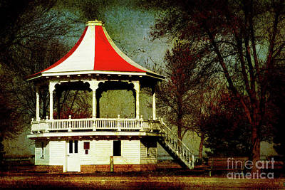 Photograph - Gazeebo by Joel Witmeyer