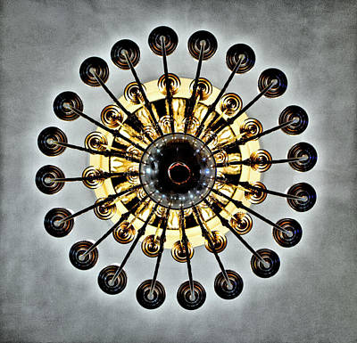 Photograph - Gazing Up Into The Light by Patricia Sanders