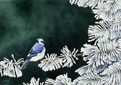 Brids Painting - Geai Bleu No. 2 by Caroline Boyer