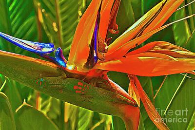 Gecko On Bird Of Paradise Art Print