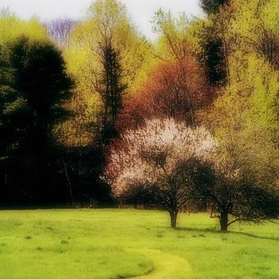 Geele Farm Meadow Art Print