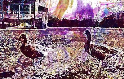 Digital Art - Geese Oca Nature Pond Landscape  by PixBreak Art