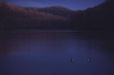 Geese On Radnor Lake Art Print by Randy Muir
