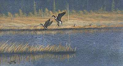 Painting - Geese by Richard Faulkner