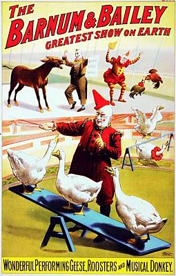 Mans Best Friend - Geese roosters and musical donkey poster 1900 by Vintage Printery