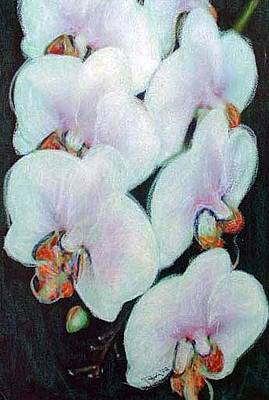 Mixed Media - Geisha Orchids by Banning Lary