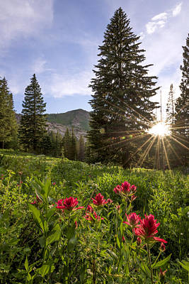 Sunburst Photograph - Gem by Chad Dutson