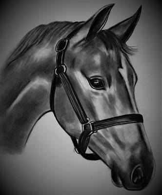 Drawing - General by Barb Baker