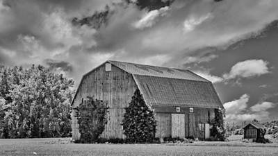 Photograph - Genesee County Barn 8395 by Guy Whiteley