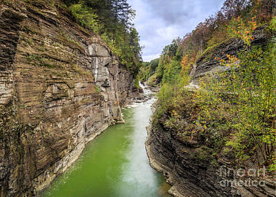Photograph - Genesee River Gorge Of Letchworth State Park by Karen Jorstad
