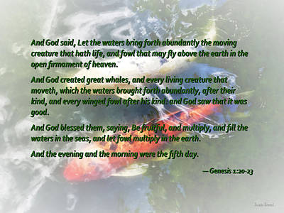 Photograph - Genesis 1 20-23 And God Said, Let The Waters Bring Forth Abundantly by Susan Savad