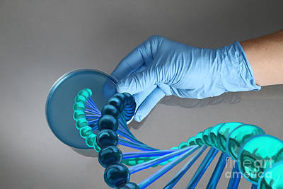 Photograph - Genetic Engineering by Spencer Sutton