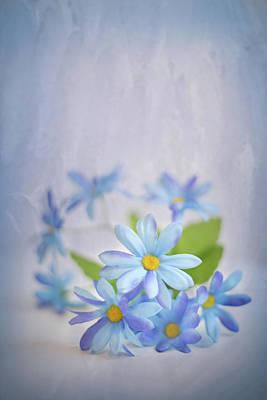 Photograph - Gentle Blues by Elvira Pinkhas