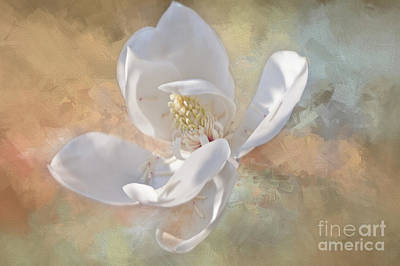 Photograph - Gentle Breeze- Magnolia Collection 2 by Janie Johnson