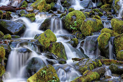 Photograph - Gentle Cascade by Rick Lawler