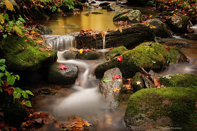 Photograph - Gentle Cascades Of Autumn  by Expressive Landscapes Fine Art Photography by Thom