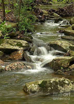 Photograph - Gentle Falls by Robert Pilkington